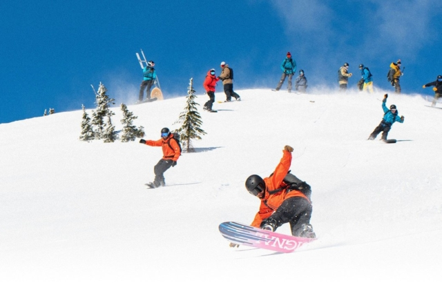 Signal Snowboards grew revenue with subscriptions